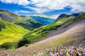 Munnar Holiday Package